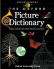SPANISH TO ENGLISH DICTIONARY  PAPERBACK BOOK